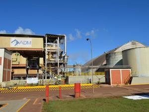 Fábrica de proteínas da ADM será construída ao lado da unidade de processamento de soja que está na foto  (Foto: Anderson Viegas/G1 MS)