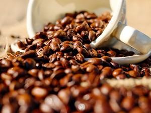 Café premium cai cada vez mais no gosto dos brasileiros (Foto: Divulgação)
