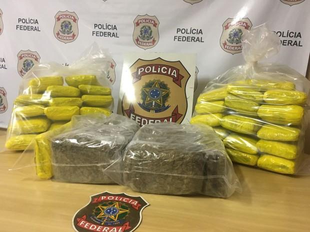 droga óbidos  (Foto: Divulgação/Polícia Federal de Santarém)