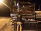 PRF apreende carga de madeira ilegal na rodovia BR-010, no nordeste do PA
