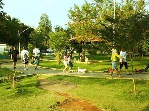 Parque terá apresentações musical e de kung fu nesta sexta-feira (Foto: G1)