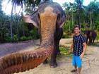 Lista traz selfie tirada por elefante e mais fotos curiosas