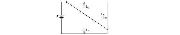 Circuito de lâmpadas conectadas por fio metálico (Foto: Reprodução/UERJ)