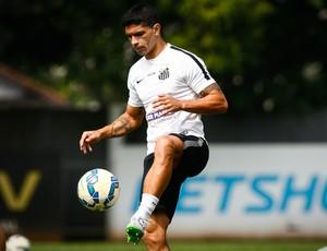 Renato espera dificuldades e casa cheia contra o Figueirense (Foto: Ricardo Saibun/Santos FC)