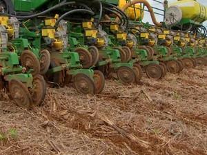 No Paraná, semeadura de milho é finalizada e de soja atinge 98% da área (Foto: Reprodução/TVCA)
