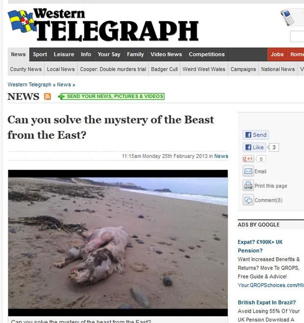 Peter Bailey flagrou uma criatura estranha em praia de Tenby (Foto: Reprodução)