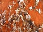 Centenas de caixas de remédios são encontrados enterrados em Caririaçu