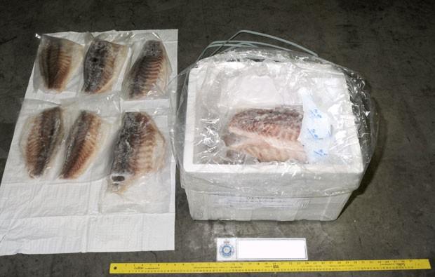 Dupla tentou contrabandear drogas escondidas em peixes congelados (Foto: Australian Federal Police/AP)