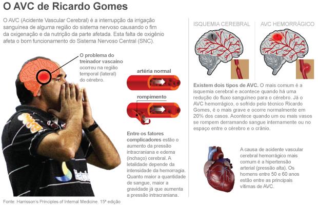 info AVC / AVE Ricardo Gomes - 5 (Foto: ArteEsporte)