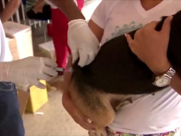 Cães e gatos a partir de 2 meses de vida podem receber vacina contra raiva (Foto: Rede Amazônica/Reprodução)