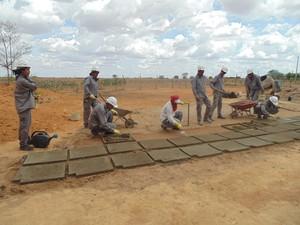Construção de cisterna pelos alunos do Projeto Escola das Àguas (Foto: Keilla Noronha/ Arquivo pessoal)