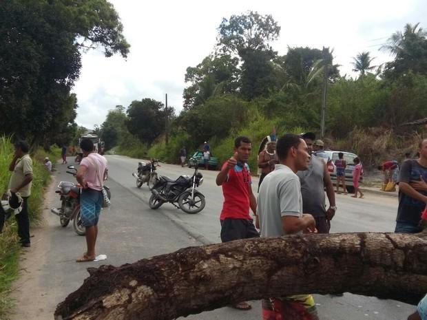 Índios usam árvore para bloquear rodovia (Foto: Igor Wassu Cocal/Arquivo Pessoal)
