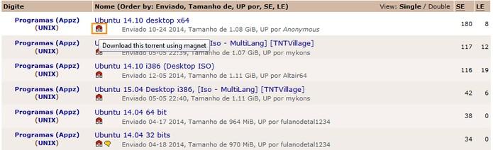 Diversos arquivos podem ser baixados por Magnet Link (Foto: Reprodução/Barbara Mannara)