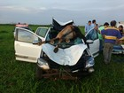 Cavalo vai parar no para-brisa de veículo e morre em acidente em MG