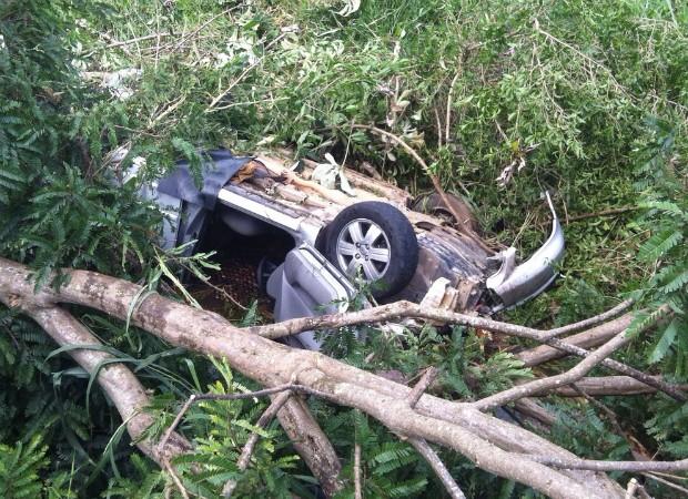 Carro saiu da pista, bateu em uma árvore e caiu em um lago (Foto: Corpo de Bombeiros/Divulgação)