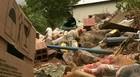 Faltam áreas para descarte de lixo (TV Globo/Reprodução)
