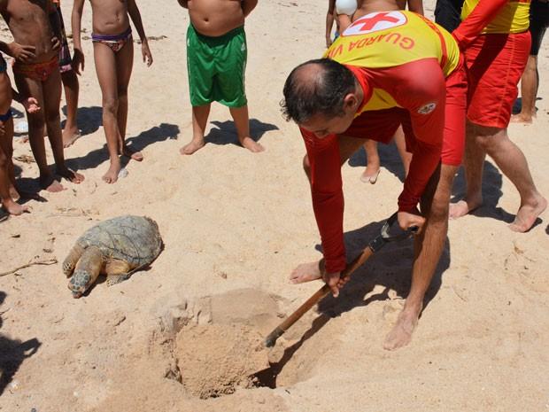 Animal foi enterrado na Praia do Sol, em João Pessoa (Foto: Walter Paparazzo/G1)