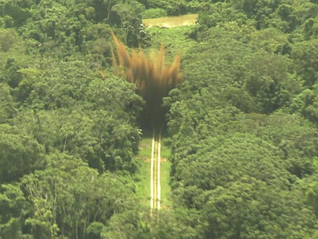 Momento em que bomba atinge pista clandestina usada por garimpeiros em Roraima (Foto: Divulgação/Wellington Simo/FAB)