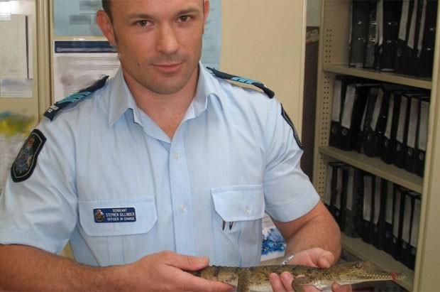 Crocodilo de meio metro foi encontrado em um posto de combustível (Foto: Reprodução/Cardwell Police Department)