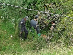 Crime ocorreu no Bairro Ouro Verde em Formiga (Foto: Polícia Militar/Divulgação)