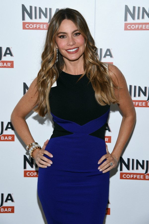 Sofia Vergara salvou uma vida no reveillon de 2012 (Foto: Getty Images)
