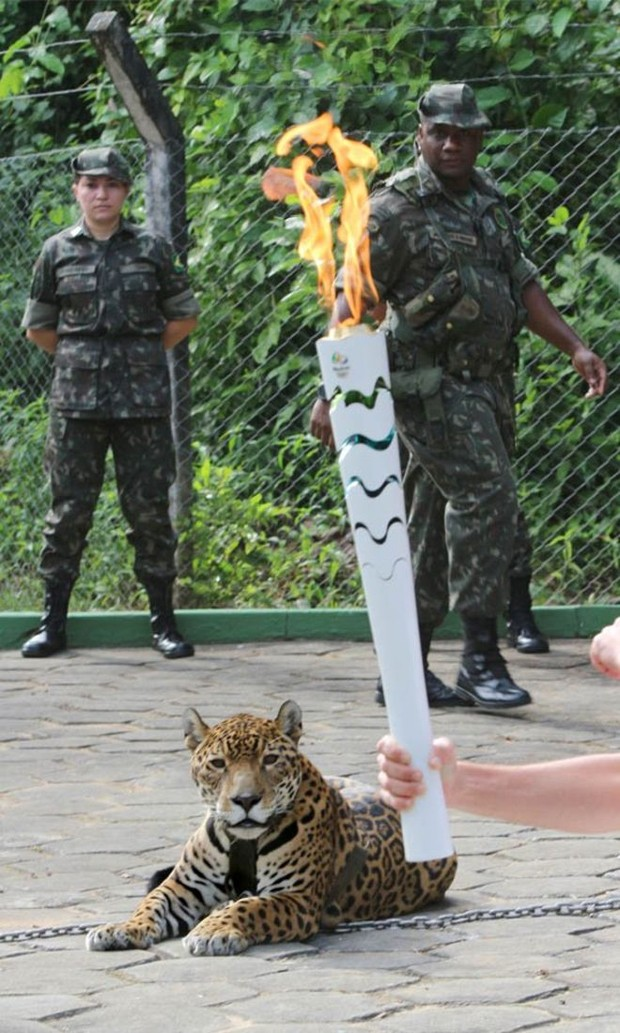 Juma foi morta com um tiro de pistola após fugir e avançar sobre soldado; ela havia sido acorrentada e apresentada ao público durante cerimônia (Foto: Jair Araújo/Diário do Amazonas)