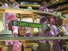 Desfile das campeãs tem festa verde e rosa (Fernanda Rouvenat / G1)