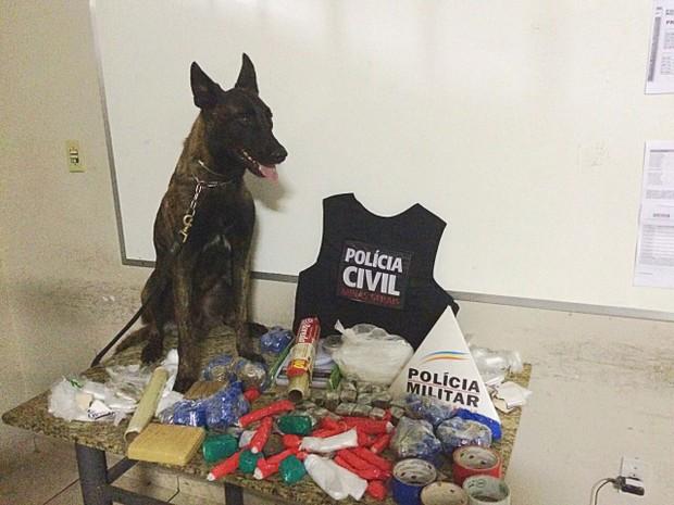 Com ajuda de um cachorro policial, material foi encontrado (Foto: Polícia Civil/Divulgação)