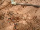 Jovem mata serpente em estrada de MS e acaba multado em R$ 500