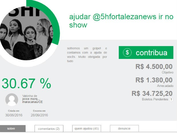Vaquinha criada por fãs de Fifth Harmony para viajar ao show de Brasília, neste domingo (3) (Foto: Reprodução)