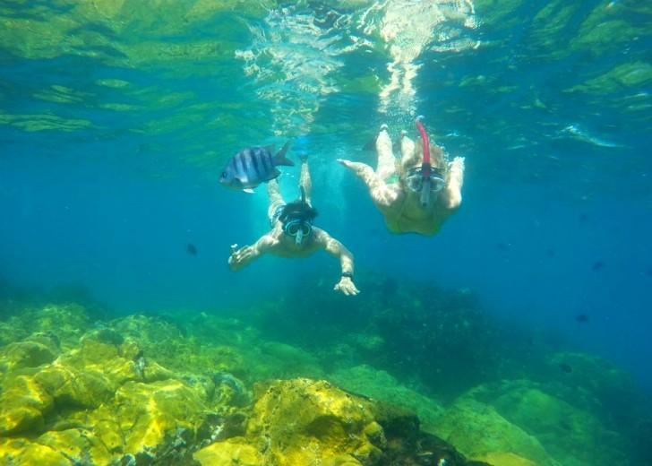 Yane Marques e Aloísio Sandes no mergulho