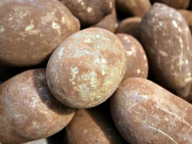 Chocolate em barra está sendo feito a partir da amêndoa do cupuaçu em Careiro (Foto: Divulgação/Fapeam)
