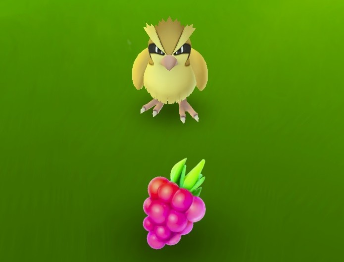 Razz Berries deixam Pokémon mais fáceis de serem capturados (Foto: Reprodução/Youtube)