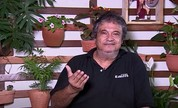 Jorge Lins, diretor do Grupo Raízes