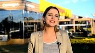 Confira o comentário da Gisele Loeblein sobre cultivo de soja
