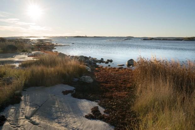 Suécia (Foto: Reprodução/AirBNB)