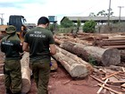 Secretaria de Meio Ambiente abre seleção para temporários no Pará