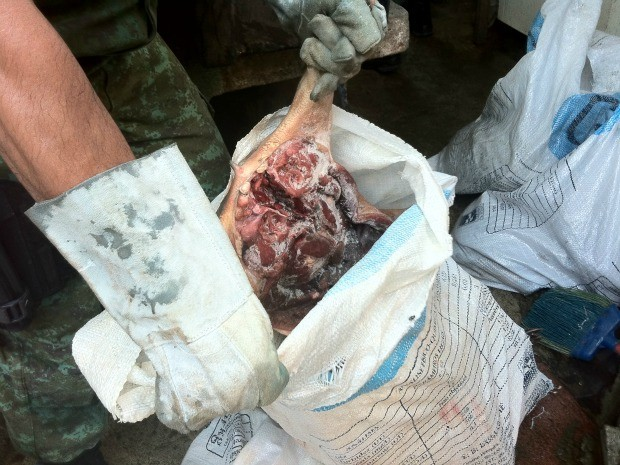 Carne de caça também foi apreendida (Foto: Girlene Medeiros / G1 AM)