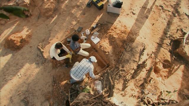 Pesquisadores buscam e mapeiam sítios arqueológicos e a descoberta dos esteios (Foto: Reprodução / TV Mirante)