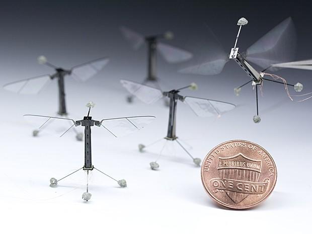 'Robô-inseto' é criado por cientistas de Harvard (Foto: Kevin Ma and Pakpong Chirarattananon, Harvard University)