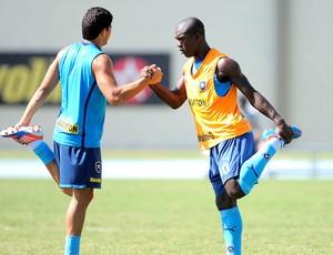 Elkeson e Seedorf no treino do Botafogo (Foto: Fábio Castro / Agif)