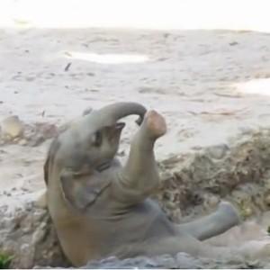 Mãe, Ajuda eu!  (Foto: Reprodução / Youtube)