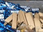 Polícia Federal incinera 4 toneladas de drogas apreendidas em GO e DF