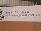 STF derruba lei que criou Instituto Chico Mendes