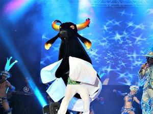 Boi-bumbá Caprichoso foi a atração do primeiro Vamos Brincar de Boi de 2013 (Foto: Camila Henriques/G1 AM)