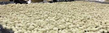 7,5 mil comprimidos de ecstasy são apreendidos (PM/Divulgação)
