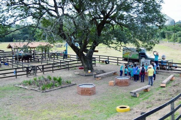 Na Kids Farm as crianças interagem e aprendem em contato com os animais  (Foto: Divulgação)