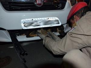 Cachorro foi resgatado pelos bombeiros (Foto: Anderson Oliveira/Blog do Anderson)