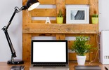 Aplique conceitos sustentáveis na decoração da sua casa