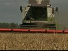 Seca no Hemisfério Norte preocupa produtores do mundo todo